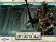 The Elder Scrolls IV : Oblivion : The Shivering Isles